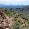 El Pinacate y Gran Desierto de Altar Biosphere Reserve from Bull Pasture Trail, Ajo Mountains