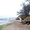 Ipswich. River Orwell at low tide. I used to come down here every morning walking our Border Collie (Sally)