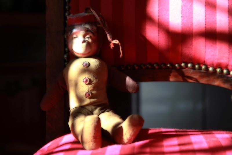 Carnival Monkey