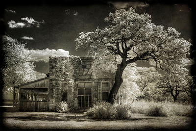 House and Tree, Texas Hill Country