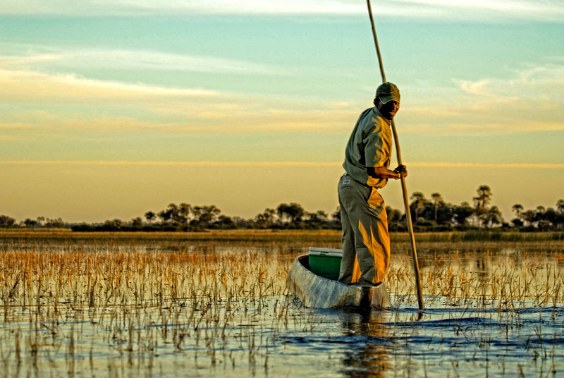 Guide in Mokoro Navigating Okavango Delta