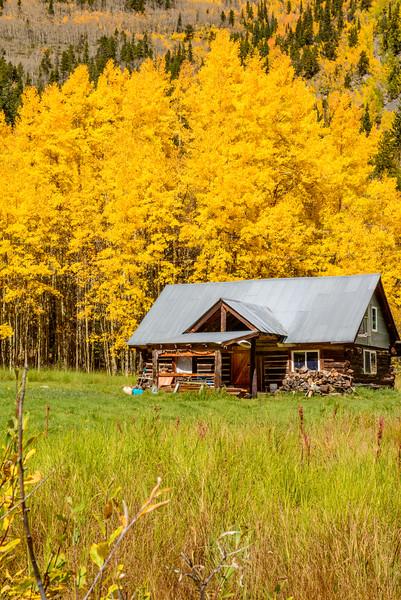 Lived-in Cabin