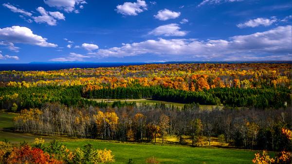 Late Fall Colors