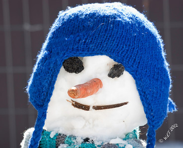 Sunny Snow Man