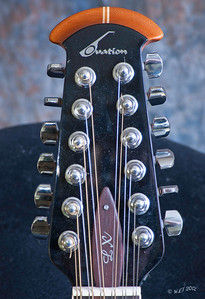 Ovation 12 String Headstock