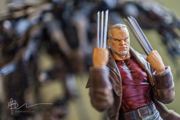 Old Man Logan