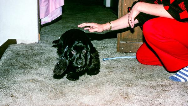 Abby gets a bath - 1990
