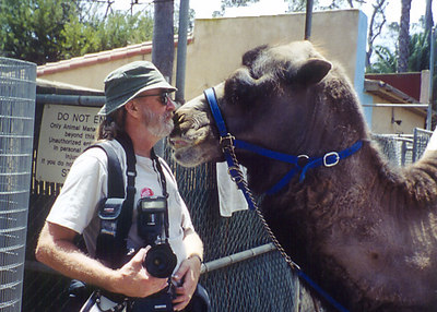"Myself with ""Elvis"", a male Bactrian Camel at the San Diego Zoo.  Photograph by Sandy Critz"
