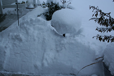 This is our bird bath out front. It is basically covered up to the top in snow. 1/29/2008