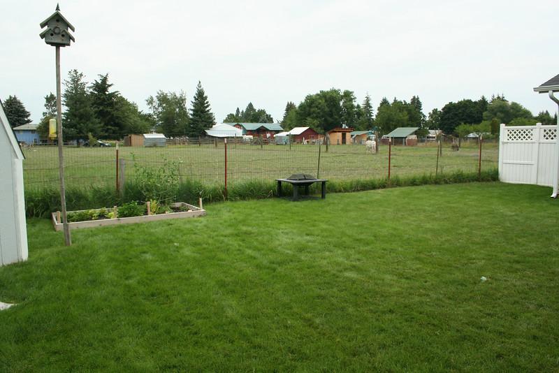 Our Garden 2009