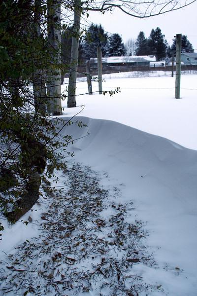 Our snow drift. Nov 2010