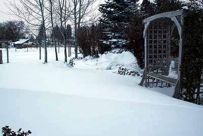 We had a 2 foot snow drift in our front yard. Nov 2010