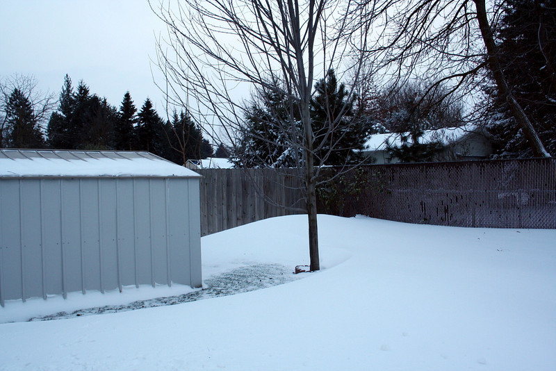 This was the first snow of Winter 2010. We had a snow storm before Thanksgiving. Nov 2010