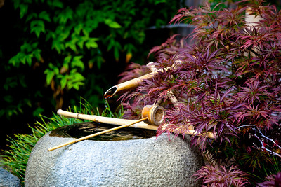 A scene from the Japanese garden at the Huntington Library in Pasadena, CA.  I got lucky to capture the drop of water just falling from the bamboo!  Also, notice the beautiful ripple effect and reflections in the water, the orange-tipped blades of grass behind the bowl, and the contrasty skeletal branches amongst the red leaves on the right... overall one of my favorite shots!