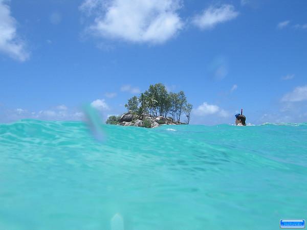 Snorkeling at Anse Royale, Mahe, Seychelles
