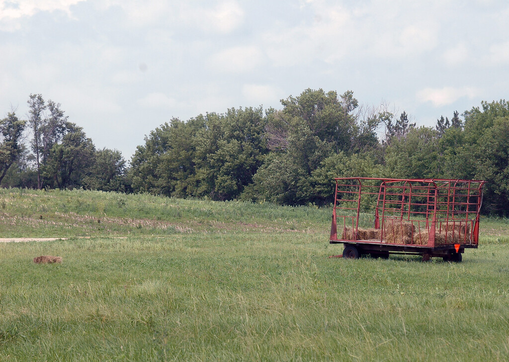 haycart<br /> summer 2014