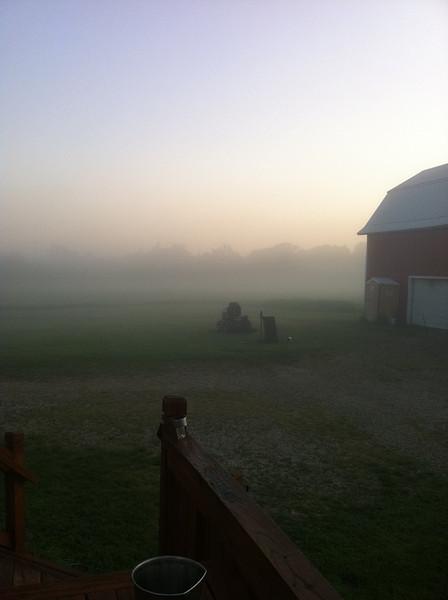 foggy morning, summer 2011