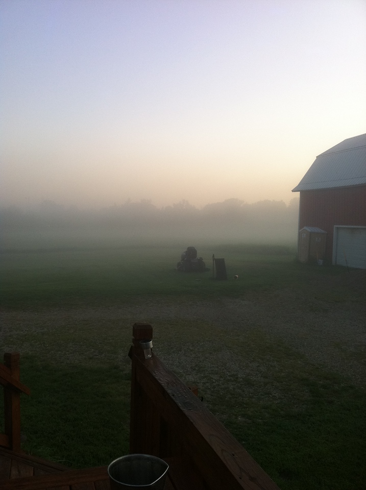 foggy morning, summer 2011
