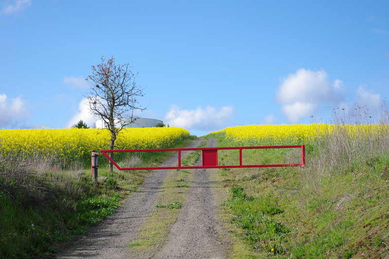 """2010 - There's a """"no trespassing"""" sign on that gate now. :("""