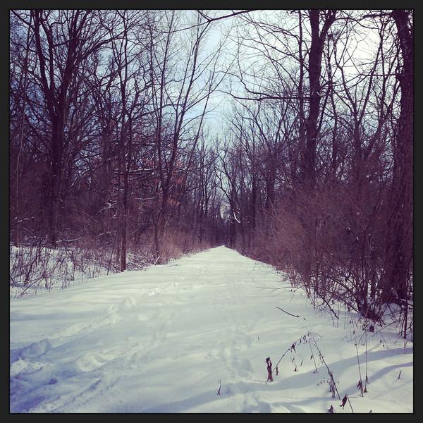 Indian Oaks park<br /> Winter 2012