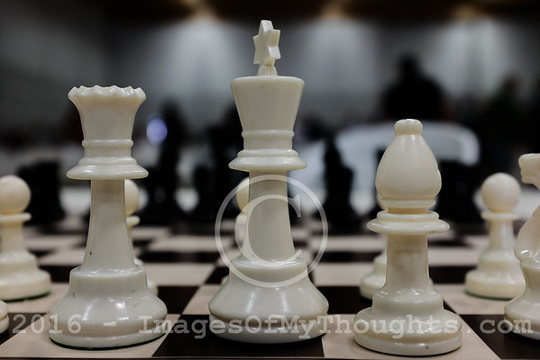 2016 Open Chess Tournament