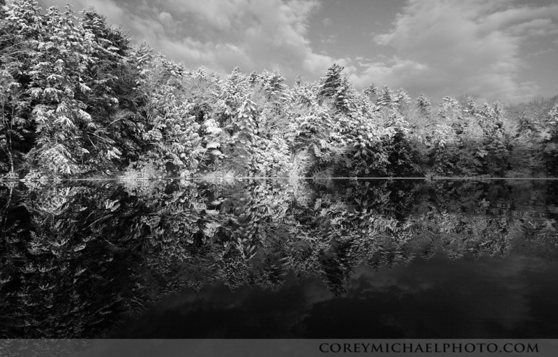 Snowy trees with a perfect reflection on the Presumpscot River