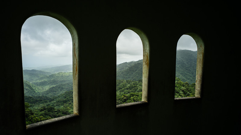 Room with a view...