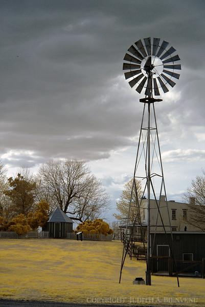 Oxon Hill Farm IR March 15, 2012 057 copy