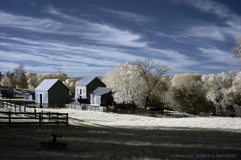 Oxon Hill Childrens Farm IR 2011 049 copy
