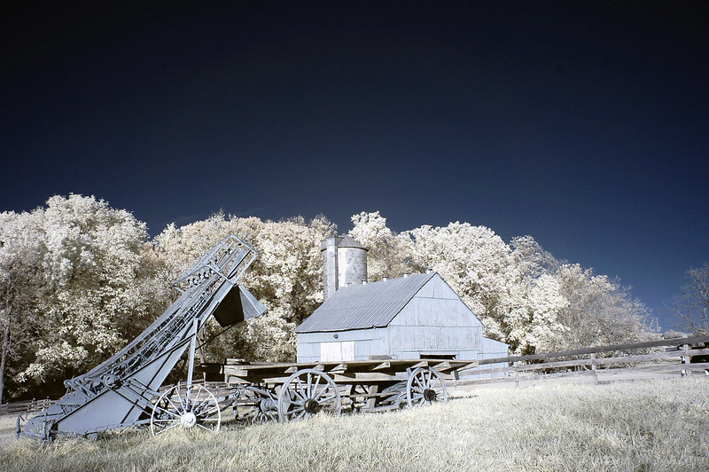 Oxon Hill Childrens Farm IR 2011 037 copy