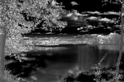 Day 361.  An odd infrared version of this image.