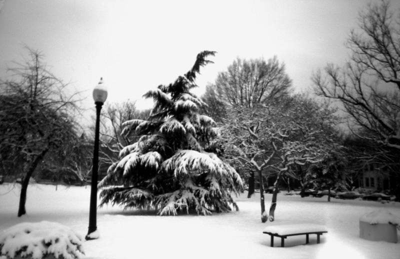 Lincoln Park, Washington, DC.