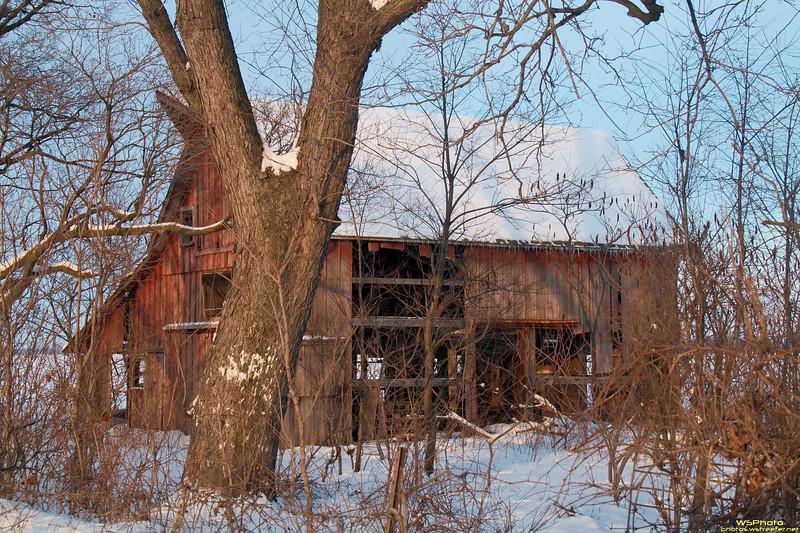 Frozen Forgotten Farm 4