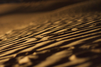 Desert dunes – Dubai, UAE