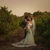 39 Wedd - Romance in the Vineyards