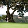 37 W-A Moment UnderThe Epic Oak