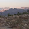 Palm Springs evening.