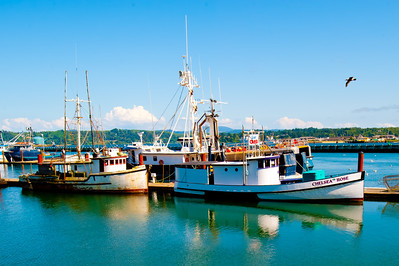 NEWPORT HARBOR, OREGON