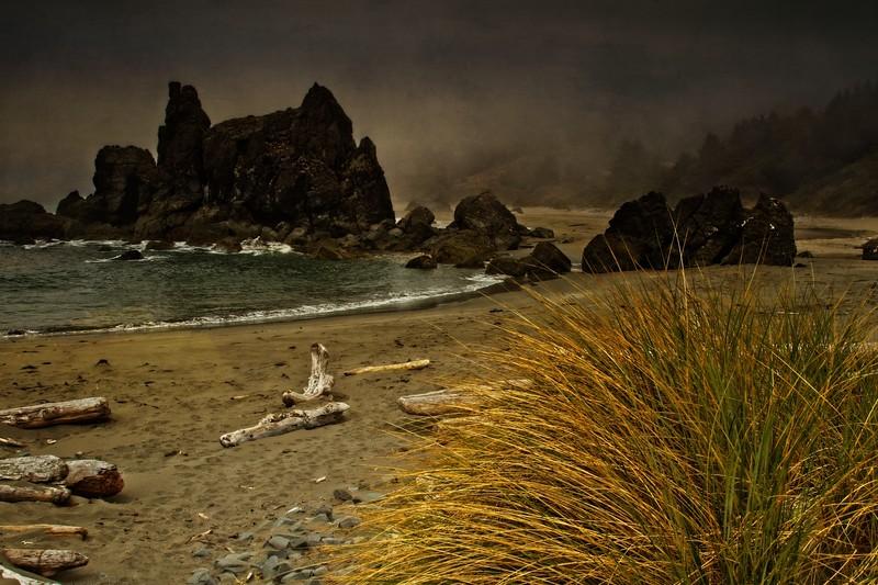 Lone Ranch Beach, southern Oregon coast near Brookings.<br /> Photo © Cindy Clark
