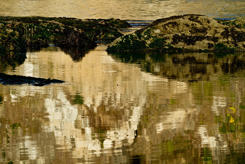 Calm waters reflecting cliffs at Cape Arago, Oregon.<br /> Photo © Carl Clark