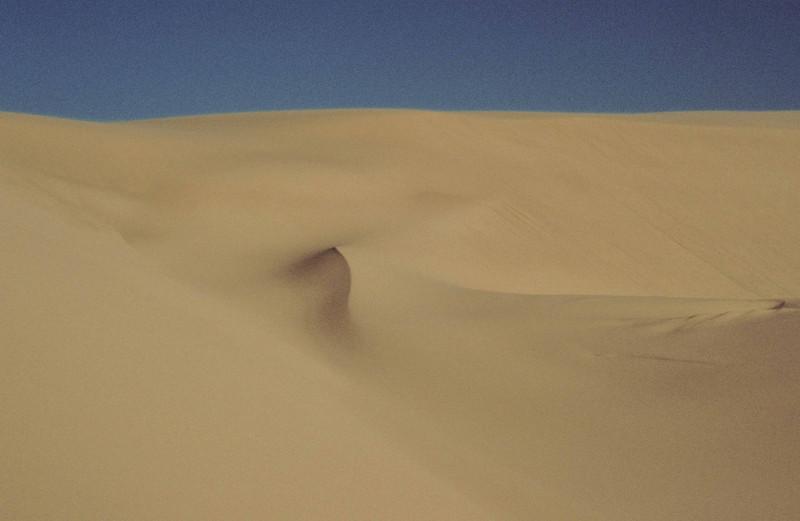 Dellenback Dunes - Oregon Coast.<br /> Photo © Carl Clark
