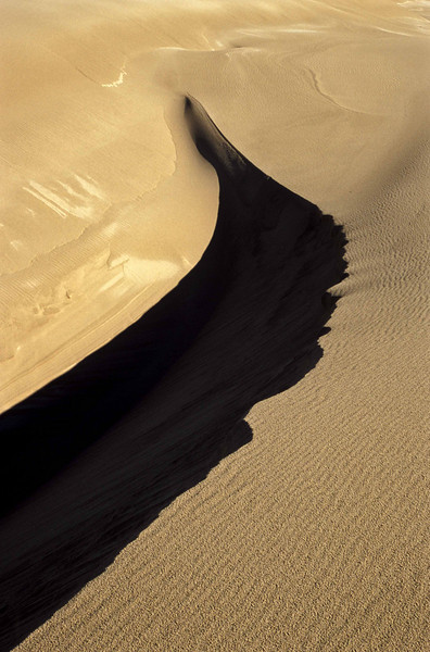 Sand forms at Dellenback Dunes - Oregon Coast.<br /> Photo © Carl Clark
