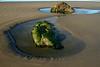 Tide pool sculptures at Ona Beach, near Newport, Oregon.<br /> Photo © Cindy Clark