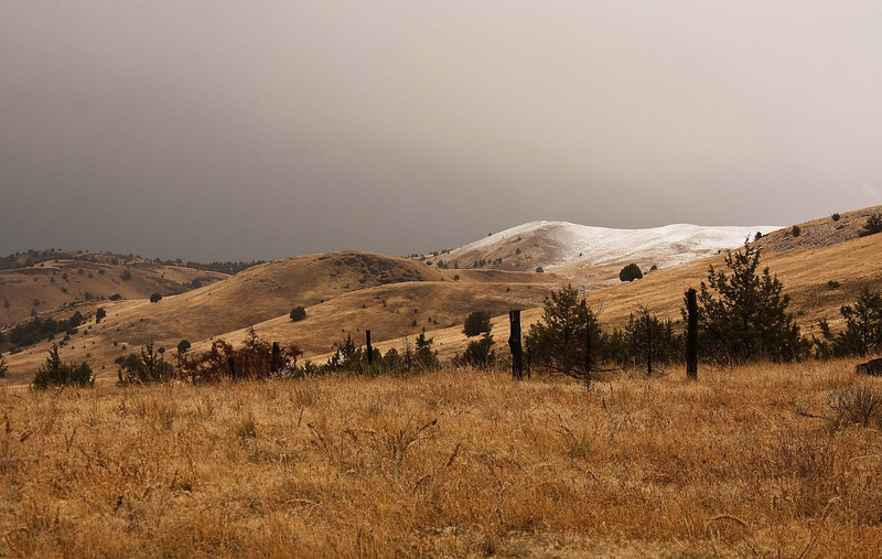 Wintery scene in eastern Oregon.<br /> Photo by Cindy Clark