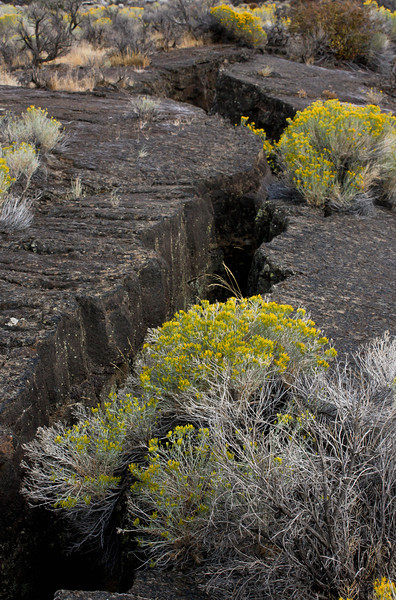 Geologically speaking, the lava flows at Diamond Craters Oregon are quite recent, dating from 60,000 to only 6,000 years ago.<br /> Photo © Cindy Clark