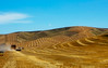 Harvesting wheat in the rolling hills of eastern Washington.<br /> Photo © Cindy Clark