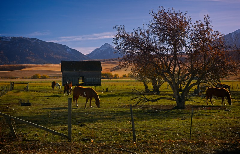 A peaceful evening in the Wallowa valley near Joseph, Oregon.<br /> Photo © Cindy Clark