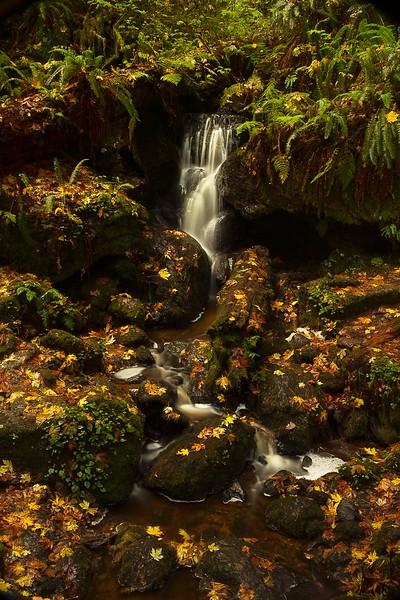 Late summer hike at Trillium Falls, northern California.<br /> Photo © Cindy Clark