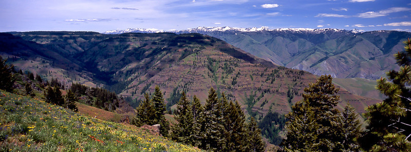 Hell's Canyon in summer splendor viewed from the Oregon side.<br /> Photo © Carl Clark