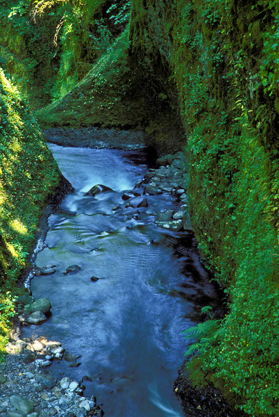 Wonder Creek and the lush walls of the Columbia River Gorge - Oregon.<br /> Photo © Carl Clark